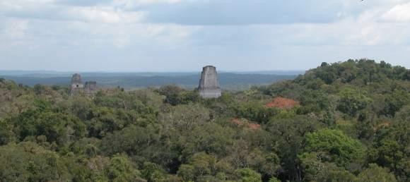 Tikal - 2014 Maya Meetings